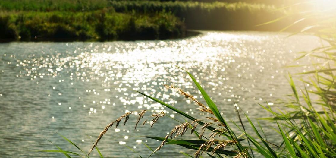 Murray Darling Basin Plan: Water Saving measures under threat